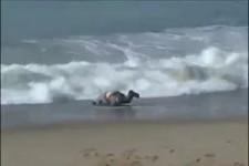 Surfen fuer Anfaenger