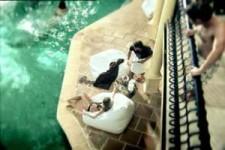 schoene-frau-am-pool