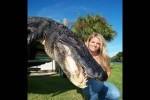 Alles-Tiere-oder-was---Teil-47.wmv auf www.funpot.net