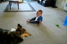 Two Puppies - Zwei süße Fratzen