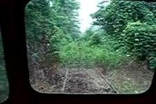 Gemuetlich russische Zugsfahrt