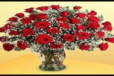 Milion Roses-Francis Goya