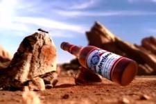 Budweiser Recycling Ants