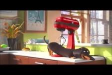 Hund und Küchenmaschine