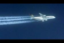 Calimeros -Silverbird am Himmelszelt