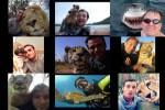 Selfies-Human-Animals.pps auf www.funpot.net