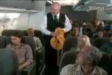 Der Flugbegleiter