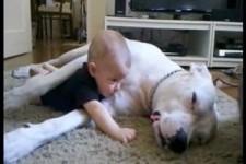 Hund and Baby