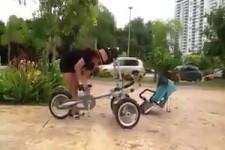 Vom Kinderwagen zum Kombirad