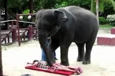 Thai Massage1