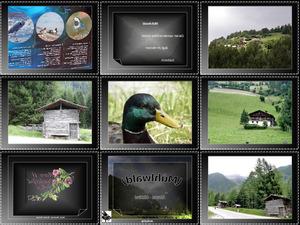 Muhlwald Ahrntal Sudtirol