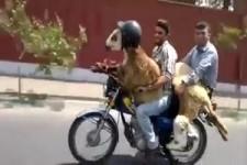 Aber mit Helm