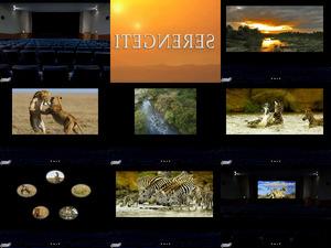 Cinema3 zeigt heute den Film SERENGETI