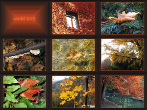 Falling Leaves B