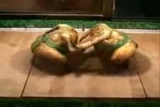 Welches Hühnchen