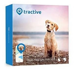 Hundehalsband mit GPS-Tracker!