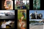 Bilder-.pps auf www.funpot.net