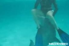 Delphin steht auf Frau