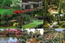 Mexiko - Natur - Gärten