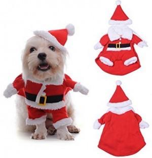 Weihnachtskostüm für Hunde!