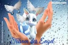 Tränen der Engel