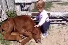 Wie Kinder Tiere lieben