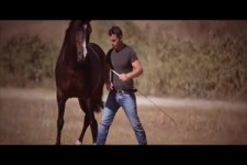 Miron Bococi Free Style Horse Show