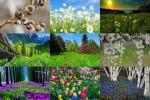 Frühling---Lente-23.ppsx auf www.funpot.net