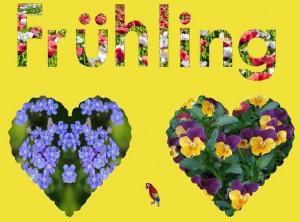 Fruehling 9