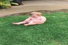 Nur nicht das Gras berühren
