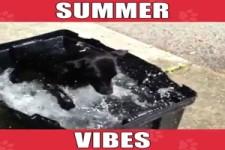 Sommer-Feeling