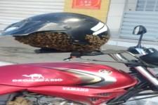Helm ist nicht mehr benutzbar