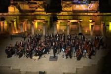 Hund mag das Orchester