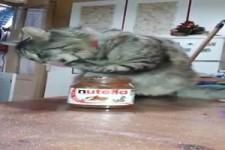 Ich liebe Nutella