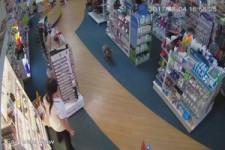 Koala geht in die Apotheke einkaufen