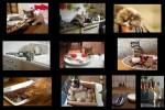 Cats---Chats---Katzen.pps auf www.funpot.net