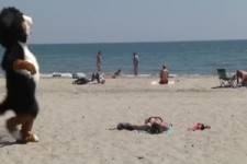Strandkasper