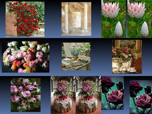 Beautyful Blumen 7