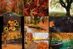 Herbst-19.ppsx auf www.funpot.net