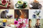 Cups-Mugs-2---Tassen-&-Becher-2.ppsx auf www.funpot.net