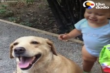Dogs and Kids Growing Up Together -