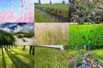 Gras-1.ppsx auf www.funpot.net