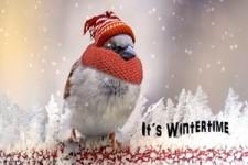 It's wintertime - Es ist Winterzeit