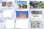 Animaux-Hiver-Neige-2---Tiere-Winter-Schnee-2.pps auf www.funpot.net