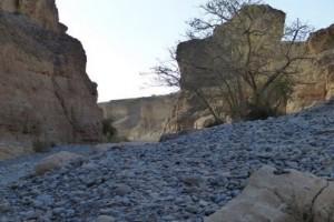 Impressionen aus Namibia 6
