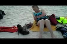 Begegnung mit einem Baby Seeloewen