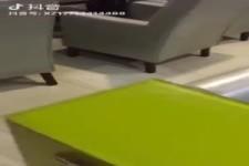 Hund schaut ertappt