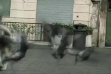 Italienische Verführungskunst!