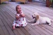 Kleine Hunde und kleine Kinder
