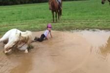 Das Pferd hat Spaß